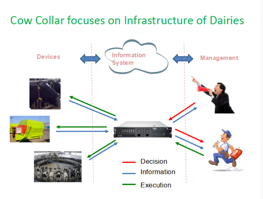 Cow Collar for Smart Dairy Management - Amazingly More Milk and More calves 5